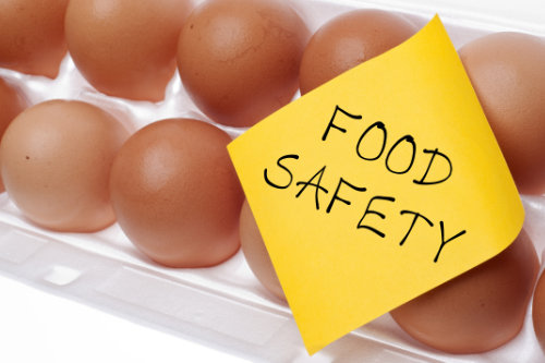 HACCP level 2 certification